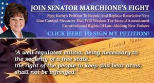 ny gun_control_petition_rotator
